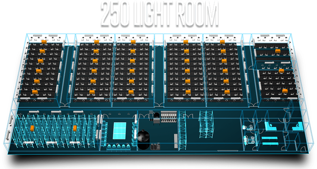 250 Light Room
